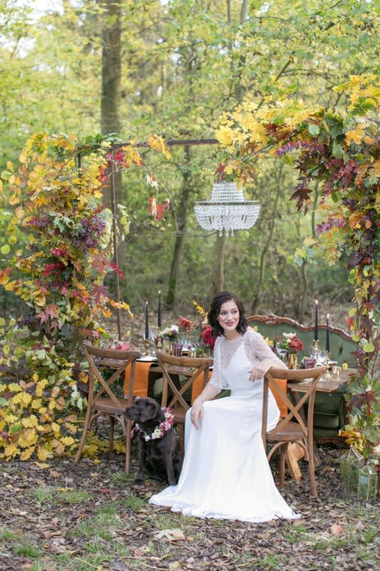 woodland wedding bride with her dog Autumnal wedding in countryside